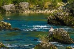 fly-fishing-sava-bohinjka-muharjenje-slovenia